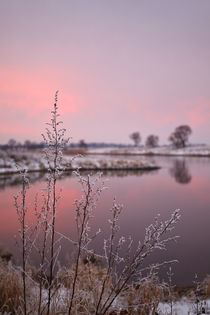 Winter Sunset At River Bank by STEFARO .