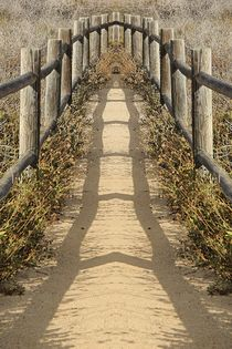 sandy walkway with wooden fence and summer sunlight by timla