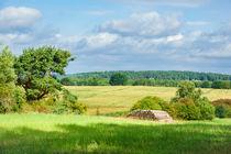 Landschaft an der Mecklenburger Seenplatte von Rico Ködder