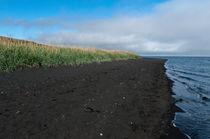 Grünes Gras, Schwarzer Strand - und dann das Meer von ysanne