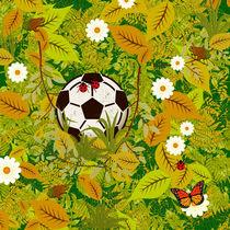 Lost my ball by Gaspar Avila