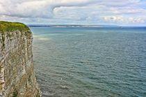 Dsc-2359-dx0-bempton-cliffs-3