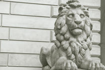 Der Wächter vom Hamburger Rathaus von kiwar