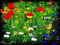 Flowersbunt