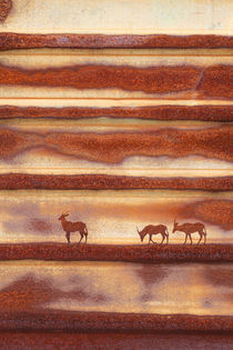 Rust-oryx