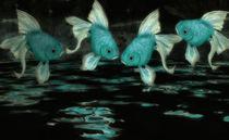 Fische-imquadturkis