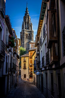 Toledo Cathedral by David Pringle