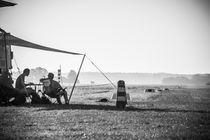 Hornet-photographie-foto-26-von-36