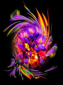 Blütenträume by Walter Zettl