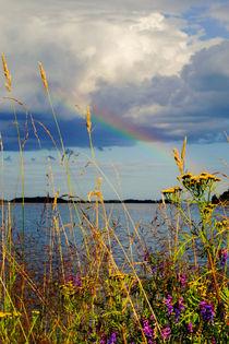 'Es blüht unter dem Regenbogen' von Thomas Matzl