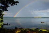 'Under the rainbow' by Thomas Matzl