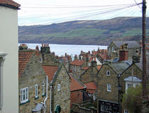 Rooftops, Robin Hood's Bay by Rod Johnson