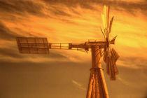 Windrad im Abendlicht von Gisela Peter