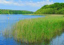 Jabelscher See by gscheffbuch