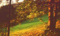 Baum aus Gold von Ulrike Ilse Brück