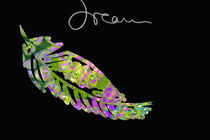 Dream-feather-green-pink