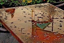 nasser Tisch von Hella Schümann