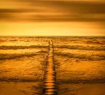 Gold-beach-dsc-3884