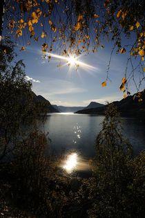 Sognefjord-neu