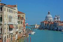 Venice3059art