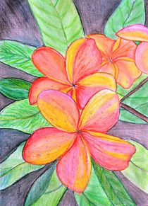 Frangipani Blossoms by Manjiri Kanvinde