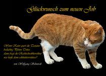Glückwunsch zum neuen Job von Wolfgang Schwerdt
