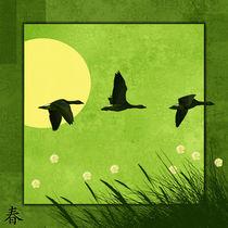 Serie 4 Jahreszeiten 1 Frühling  von Monika Juengling