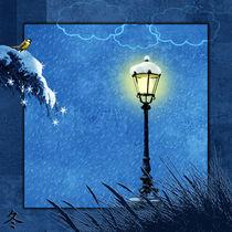 Serie 4 Jahreszeiten Winter by Monika Juengling