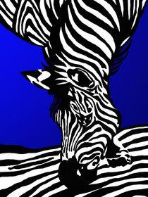 Zebra by Gabi Siebenhühner