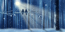 Winter Love von Monika Juengling