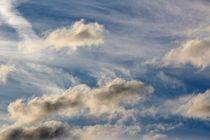 11503-regenwolken