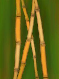 Bambus-braun5