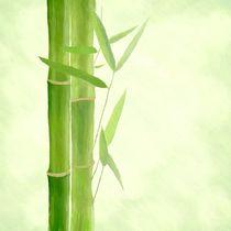 Bambus-gemalt