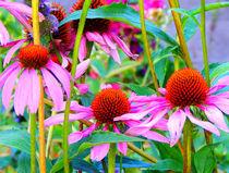 """""""Leuchtblumen"""" von Zarahzeta ®"""