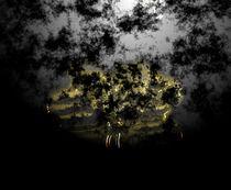 Night-cue-state-2015