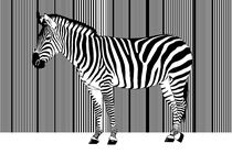 Zebra-Barcode von Monika Juengling