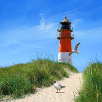 Am Leuchtturm beim Deich von Monika Juengling