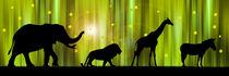 Afrikas Tiere im Zauberwald von Monika Juengling