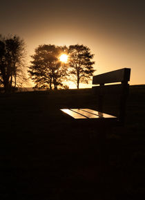 Sunset seat by Leighton Collins