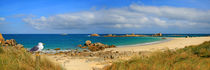 Wilde Küste der Bretagne in Panorama by Monika Juengling
