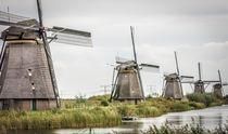 Row of windmills by Erik Mugira