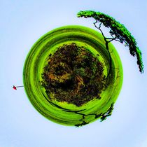 golf course with trees and blue sky in small planet style von timla