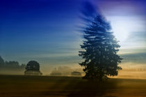 Autumn mood 971316 von Mario Fichtner