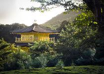 Kinkaku temple by Erik Mugira