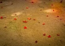 Momiji leaves in Shukkei park von Erik Mugira
