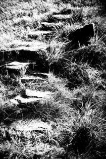 Wanderpfad by Bastian  Kienitz