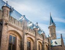 Roof of Ridderzaal by Erik Mugira