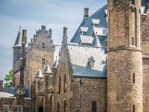 Ridderzaal in Binnenhof by Erik Mugira