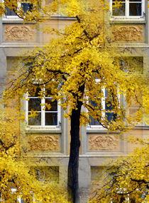 Herbst in der Stadt by Irmtraut Prien