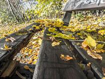 Herbstlich pausieren von Nicole Bäcker